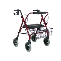 Heavy Duty Wide Walker (RG4205)